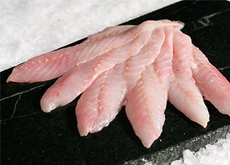 Fresh Pacific Red Snapper Fillet